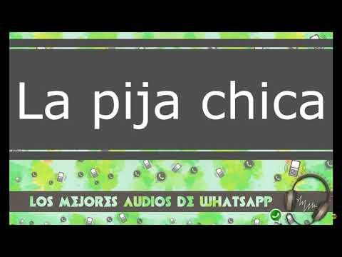 LA PIJA CHICA - Audios graciosos cortos de WhatsApp 2018