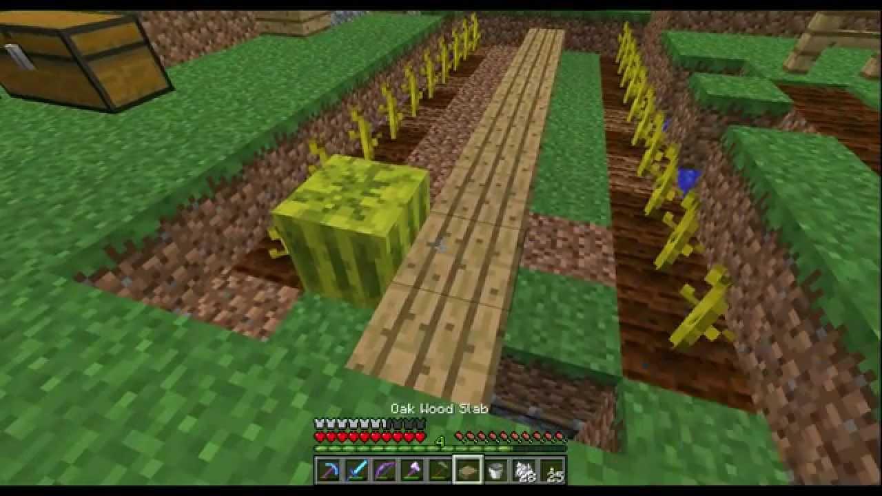 Minecraft mee 46 automatische meloen farm en een t flop youtube - Hoe sluit je een pergola ...