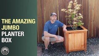The Amazing Jumbo Planter Box for Trees & Shrubs