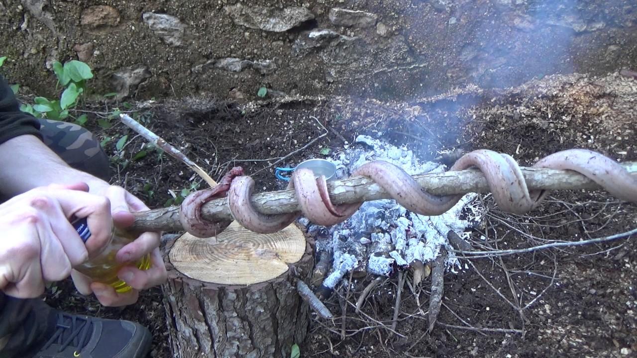 SUPERVIVENCIA: cazando y comiendo serpiente.