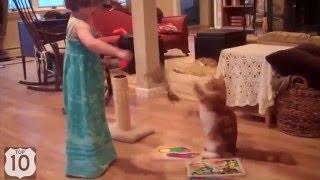 Кошки и маленькие дети.  Подборка смешных видео.