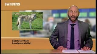 BWeins-Nachrichten 09.08.2017