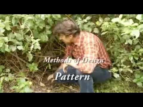 bill mollison permaculture design manual pdf