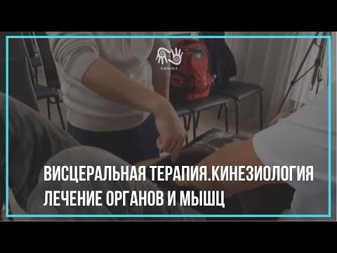 Висцеральная терапия.Кинезиология. Лечение органов и мышц.
