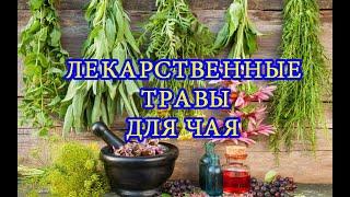 Сбор лекарственных трав для чая (иван-чай, мать-и-мачеха, зверобой, клевер) (Маткин, Новополоцк)