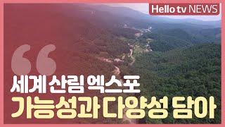 [헬로! 강원] 무한 가능성과 다양성 담은 산림 엑스포 이미지
