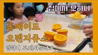 오렌지쥬스 만들기 아이 건강 과일쥬스 스퀴저사용방법 과…