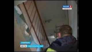 Спасатели избавили многоэтажку от летучих мышей