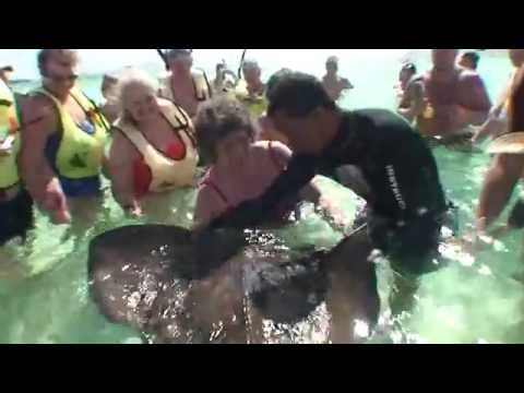 Jonathan & Amy Grand Turk Gibbs Cay Stingray Adventure 2008