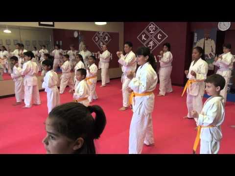 Tokon Sacramento - Sacramento's best Shotokan Karate