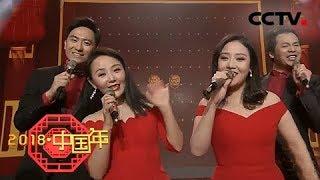 《2018中国年》 20180218 明星大咖携手中文国际主持人嗨翻全场 给你好看   CCTV中文国际