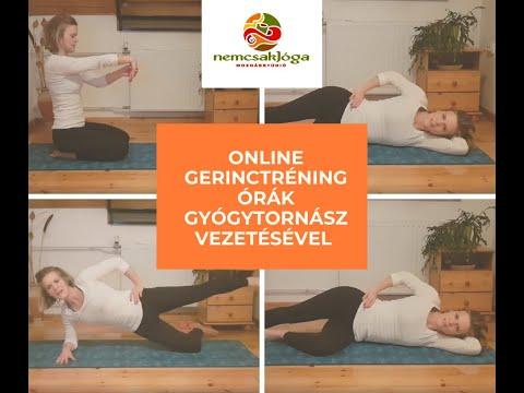 SpineArt - Csipőfájdalom Kezelése   Csipő Torna   noelgold.hu