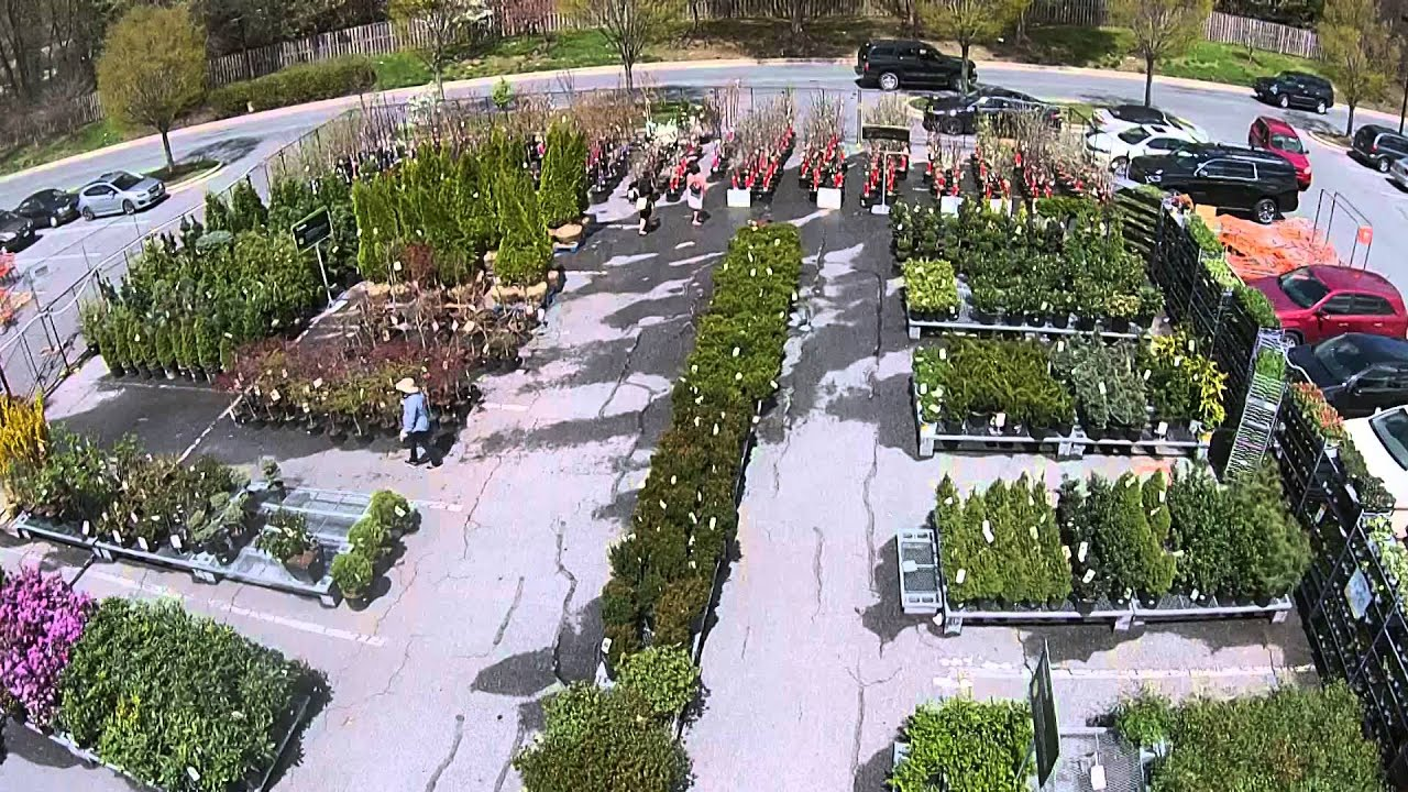 Home Depot Garden Center in Maryland YouTube