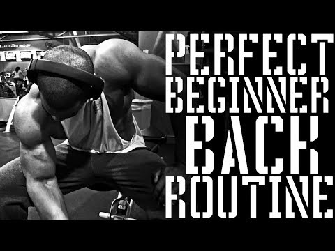 Perfect Beginner Back Routine | 10 Week Mass Gain Program