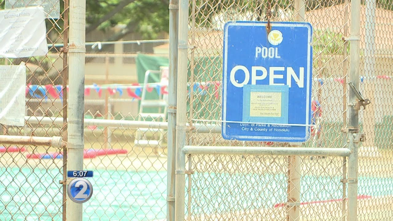 Ducks Feces Staying Out Of Pool At Kailua District Park Youtube