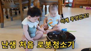 로봇청소기 아기 반응 : 한 놈은 두들겨 패고 한 놈은…