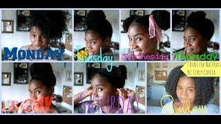 Natural Curly Hair~~ Space Buns plus 6 more styles :) CurlyCaycia
