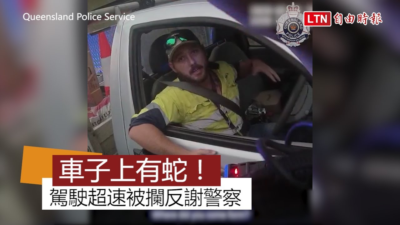 影片曝光!男超速被攔反謝警 原來剛與全球最毒蛇生死搏