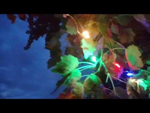 [Schoolproject] GRiZ - For The Love (feat. Talib Kweli)