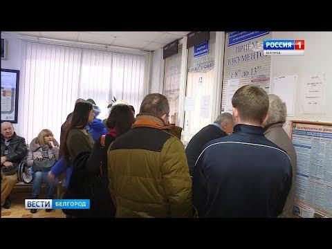 ГТРК Белгород - Ажиотаж в ГИБДД: водители меняют права раньше срока