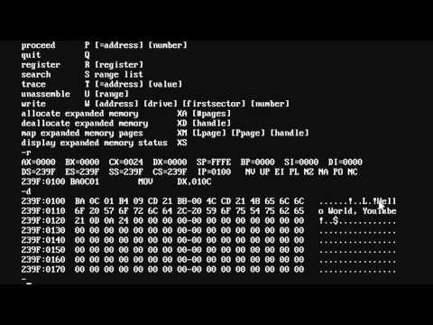 Introduction to x86 Assembly (DOS)