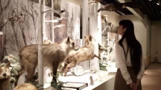 30秒の旅|長野県大町市 大町山岳博物館【30 seconds trip】