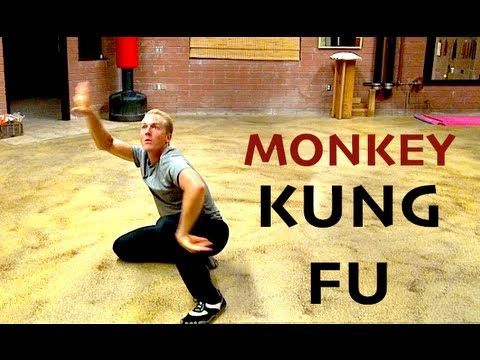 Incredible MONKEY KUNG FU Kata!!!