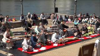 Roosevelt Island 2011 Cherry Blossom Festival
