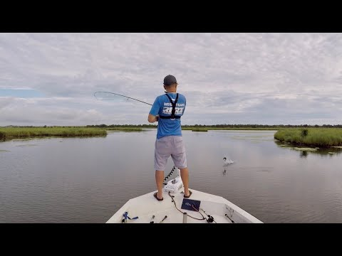 How To Catch Fish In The Marsh Right Now