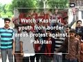 Watch: Kashmiri youth from border areas protest against Pakistan  - Jammu & Kashmir News