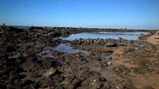 La Marea mas baja en 20 años en El Puerto de Santa Maria