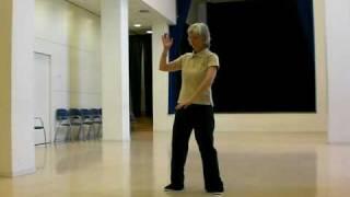 Shibashi Tai chi Qigong 18 movements