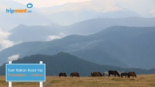 Transalpina: My Favourite Pass in the Carpathian Mountains