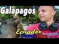 🇪🇨ECUADOR TRAVEL VLOG - First Impressions of the Galapagos Islands