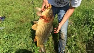 Платная рыбалка в Татарстане. Хрустальное озеро