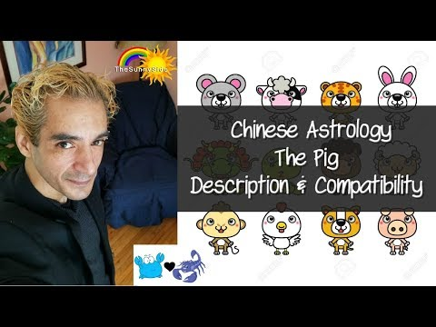 Chinese Astrology: The Pig - Personality & Compatibility