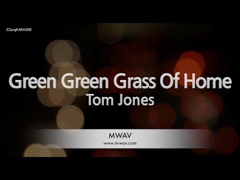 Download Tom Jones-Green Green Grass Of Home (Melody) [ZZang KARAOKE]