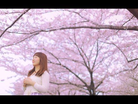 日本樱花歌曲_樱花的日子 The Days of Sakura (源创歌曲,日本曲风, Japanese inspired ...