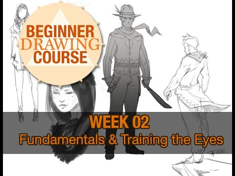Beginner Drawing Course: Week 02 - Fundamentals and Training The Eyes