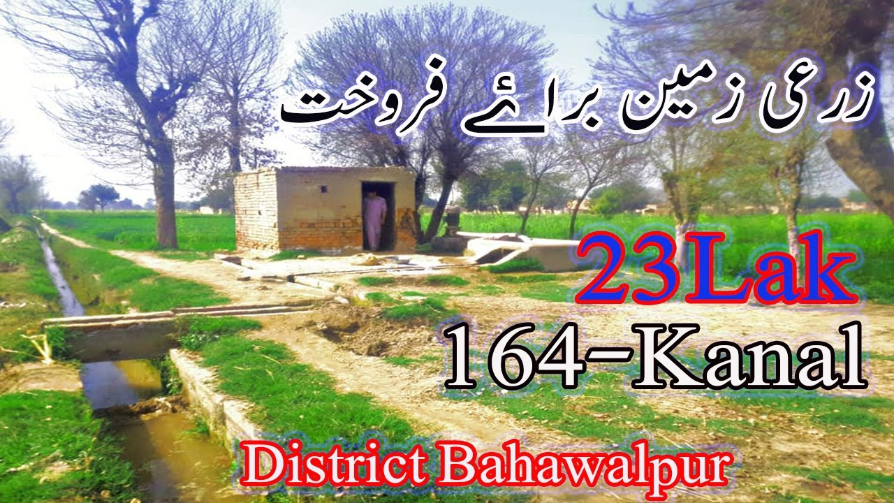 164kanal Raqba Price 23Lac Cheap Land in Pakistan Only Serious Persons Contact
