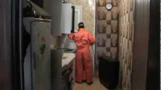 Дезинсекция квартиры, уничтожение тараканов.(, 2013-08-14T10:13:02.000Z)