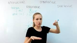 Русский язык для иностранцев. Урок 4. Озвончение, оглушение, смягчение