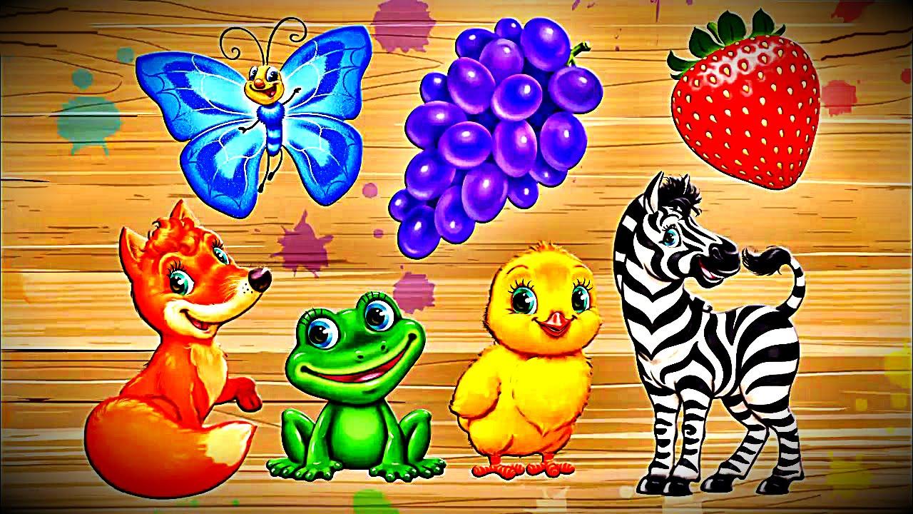 яркие развивающие картинки для малышей