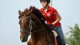 Nentori. Horses/Клип про лошадей / Конный спорт