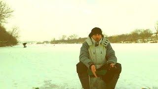 Карася полно, но почему не клюет? Ловля карася зимой на пруду. Ловля ерша на мотыля