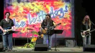 The Lost Dogs - That