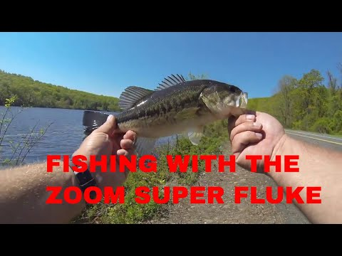 Fishing Long Pond In Orange County New York With The Zoom Super Fluke