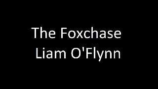 The Fox Chase - Liam O