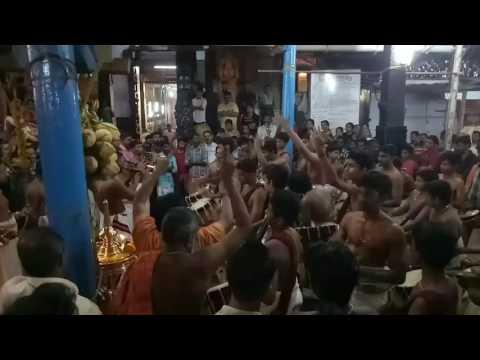 Kumaranalloor Panchari Melam 5 am kalam