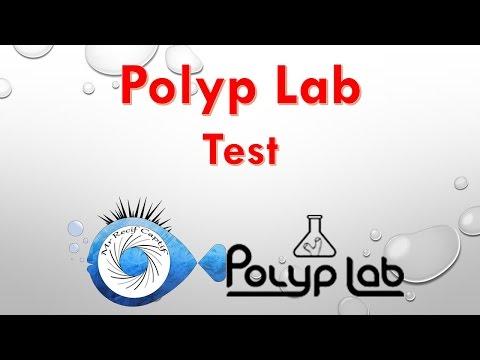 Retour de mon expérience des produits polyp lab - Mr Recif Captif #92